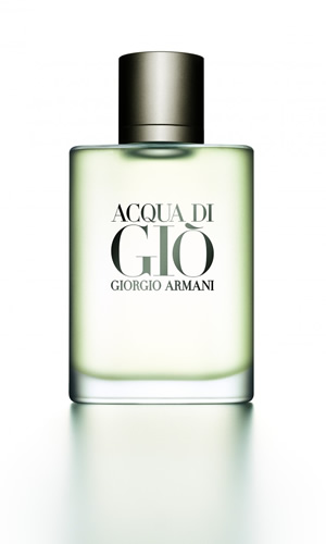 Giorgio Armani Acqua di Gio for Men 100ml EDT Spray
